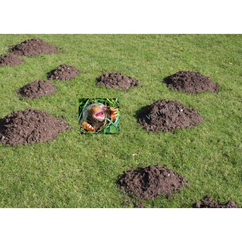 Mollenschrik 2set afschrikmiddel verdrijver voor mollen en muizen
